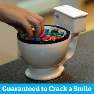 There is no bigger gag than drinking out of a glazed ceramic toilet. Dogs do it all the time, so it must be harmless, right?
